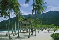 TOUR TO SCENIC MARACAS BEACH